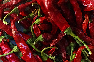 Hot Sauce Peppers
